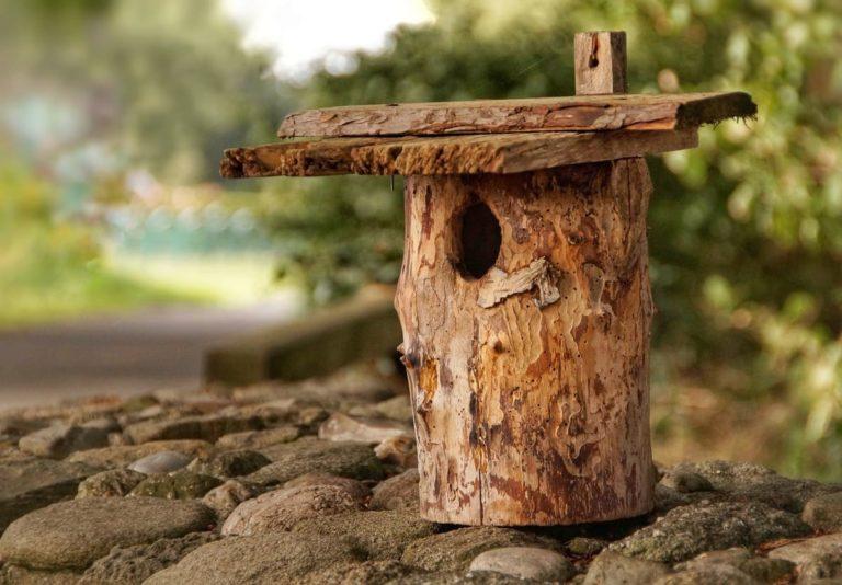 cabane à oiseaux en bois