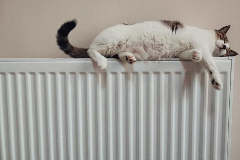 radiateur pour chaudière électrique