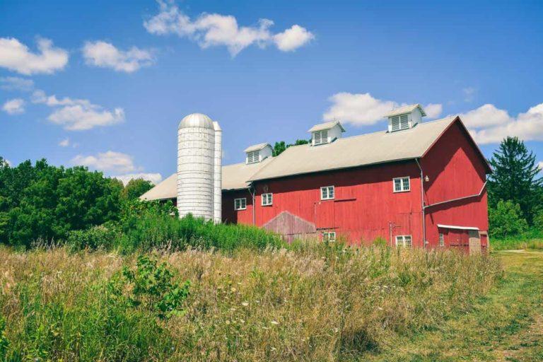 chaudière à granulés silo