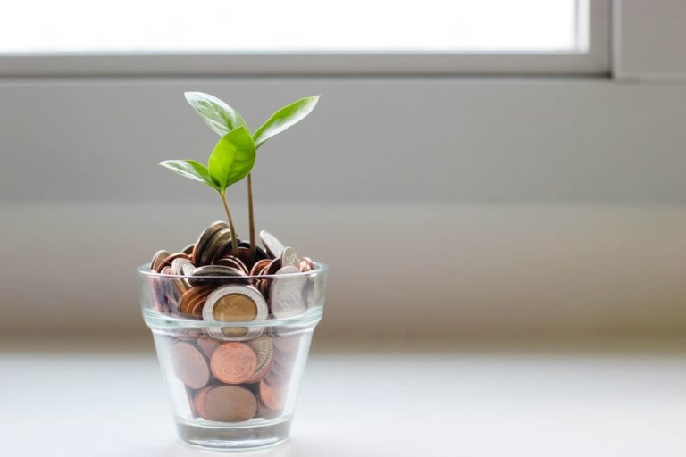 isolation combles gratuit economie